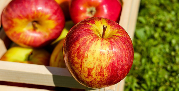 Apples for Healthy Skin